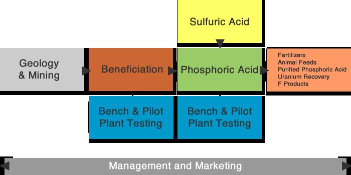 phosphate-team-optimized